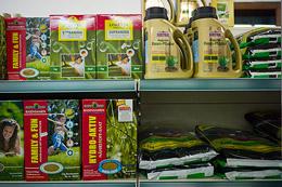Premium Saatgut bei Bommers